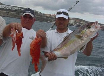 reef fish Cavalier & Blue Marlin Sport Fishing Gran Canaria