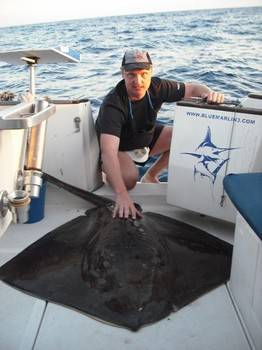 24/03 common stingray Cavalier & Blue Marlin Sport Fishing Gran Canaria