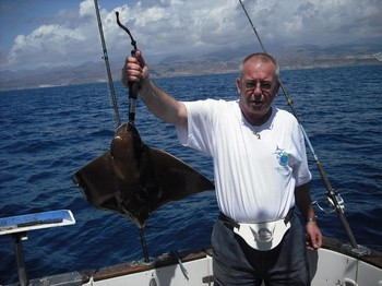 eagle ray Cavalier & Blue Marlin Sport Fishing Gran Canaria