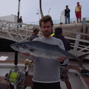 Pesca deportiva Gran Canaria Pesca Deportiva Cavalier & Blue Marlin Gran Canaria