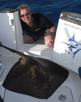 12/06 common stingray Cavalier & Blue Marlin Sport Fishing Gran Canaria
