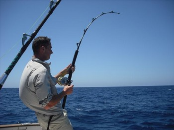 hookud up Cavalier & Blue Marlin Sport Fishing Gran Canaria