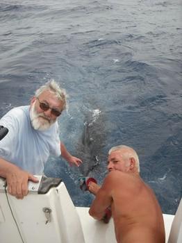 16/07 release me Cavalier & Blue Marlin Sport Fishing Gran Canaria