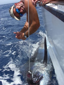 19/07 blue marlin Cavalier & Blue Marlin Sport Fishing Gran Canaria