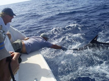 05/08 blue marlin Cavalier & Blue Marlin Sport Fishing Gran Canaria