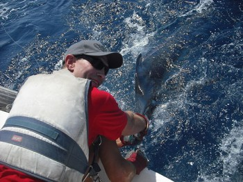 12/08 blue marlin Cavalier & Blue Marlin Sport Fishing Gran Canaria