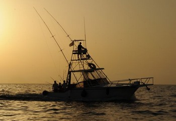 cavalier by night Cavalier & Blue Marlin Sport Fishing Gran Canaria