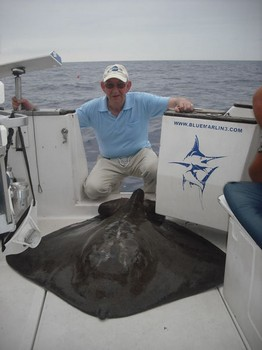 08/09 common stingray Cavalier & Blue Marlin Sport Fishing Gran Canaria