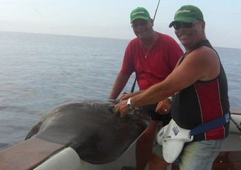 14/10 common stingray Cavalier & Blue Marlin Sport Fishing Gran Canaria