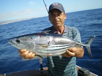 05/12 Skipjack Tuna Cavalier & Blue Marlin Sport Fishing Gran Canaria