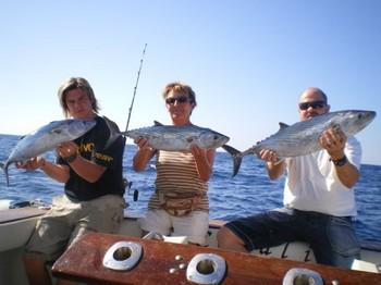 Atlantic Bonitos Cavalier & Blue Marlin Sport Fishing Gran Canaria