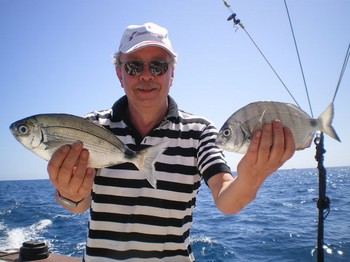 White Seabreams Cavalier & Blue Marlin Sport Fishing Gran Canaria