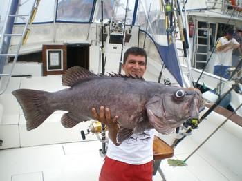 Pez naufragio Pesca Deportiva Cavalier & Blue Marlin Gran Canaria