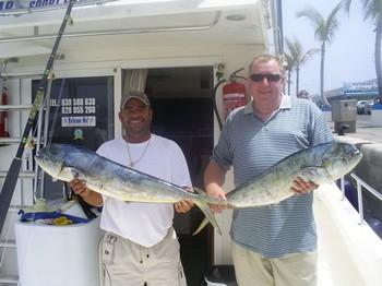 30/04 Dorado Cavalier & Blue Marlin Sport Fishing Gran Canaria