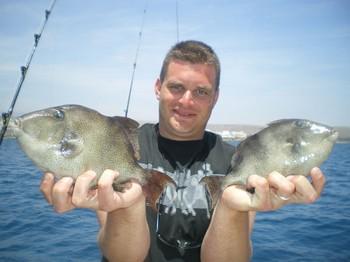 Trigger fish Cavalier & Blue Marlin Sport Fishing Gran Canaria