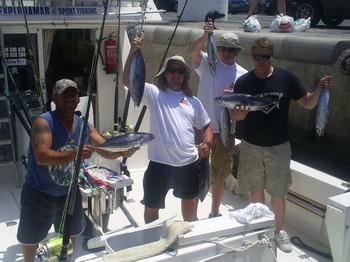 Skipjack Tunas Cavalier & Blue Marlin Sport Fishing Gran Canaria