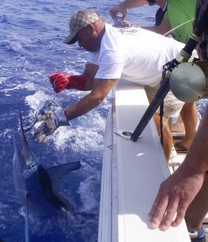 03/06 Spearfish Cavalier & Blue Marlin Sport Fishing Gran Canaria