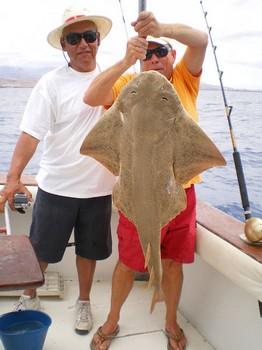 Anngel Shark or Monk Fish Cavalier & Blue Marlin Sport Fishing Gran Canaria