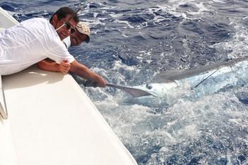 08/08 Blue Marlin Cavalier & Blue Marlin Sport Fishing Gran Canaria