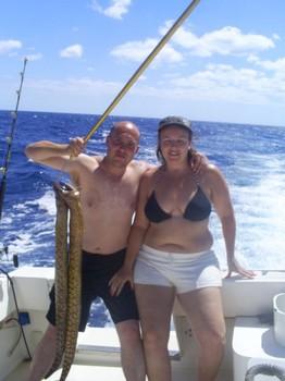 Tiger Moray Cavalier & Blue Marlin Sport Fishing Gran Canaria