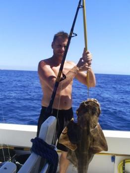 Angelshark Cavalier & Blue Marlin Sport Fishing Gran Canaria
