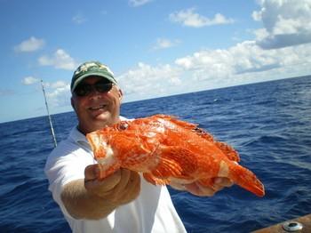Scorpion fish Cavalier & Blue Marlin Sport Fishing Gran Canaria