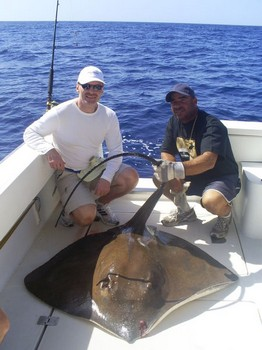 29/10 Common Stingray Cavalier & Blue Marlin Sport Fishing Gran Canaria