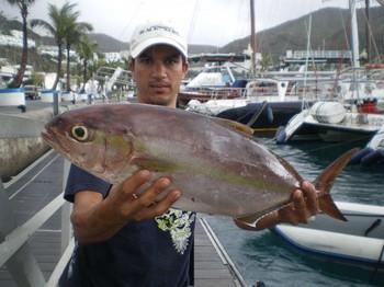 Medregal Pesca Deportiva Cavalier & Blue Marlin Gran Canaria