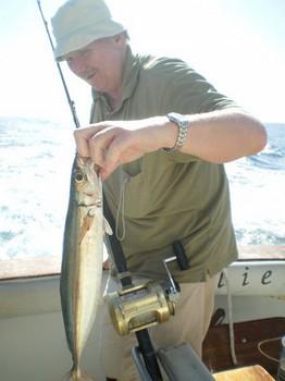 Scad Mackrel Cavalier & Blue Marlin Sport Fishing Gran Canaria