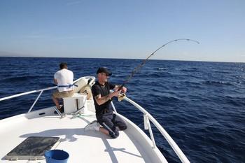 Jamie Blue Cavalier & Blue Marlin Sport Fishing Gran Canaria