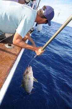 Hook Up Cavalier & Blue Marlin Sport Fishing Gran Canaria