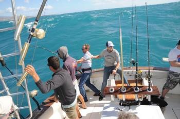 Windy Cavalier & Blue Marlin Sport Fishing Gran Canaria