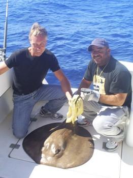 Raya cola rugosa Pesca Deportiva Cavalier & Blue Marlin Gran Canaria