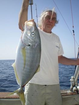 Crevalle Jack Cavalier & Blue Marlin Sport Fishing Gran Canaria