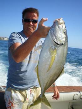 Yellow Tail Cavalier & Blue Marlin Sport Fishing Gran Canaria