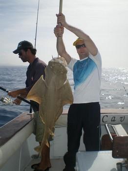 14/05 Angelshark Cavalier & Blue Marlin Sport Fishing Gran Canaria