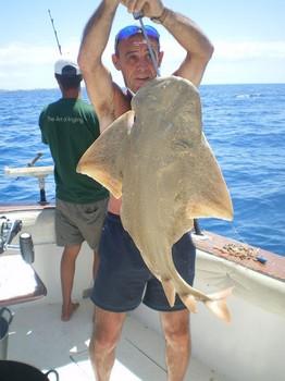 20/05 Angel shark Cavalier & Blue Marlin Sport Fishing Gran Canaria