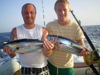 Skipjack Tuna's Cavalier & Blue Marlin Sport Fishing Gran Canaria