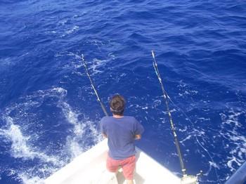Alvero hooked up Cavalier & Blue Marlin Sport Fishing Gran Canaria