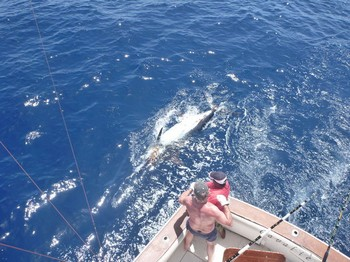19/08 Tag and Release Cavalier & Blue Marlin Sport Fishing Gran Canaria