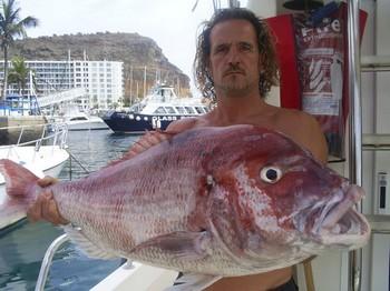 21/09 Red Snapper Cavalier & Blue Marlin Sport Fishing Gran Canaria