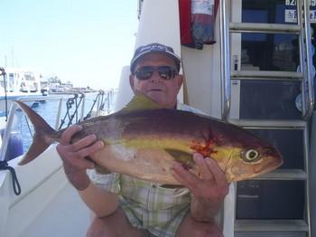 19/09 Amberjack Cavalier & Blue Marlin Sport Fishing Gran Canaria