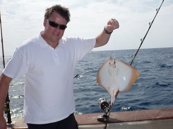 Common Sting Ray Cavalier & Blue Marlin Sport Fishing Gran Canaria