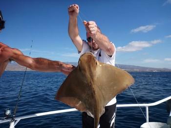 Eagler ray Cavalier & Blue Marlin Sport Fishing Gran Canaria