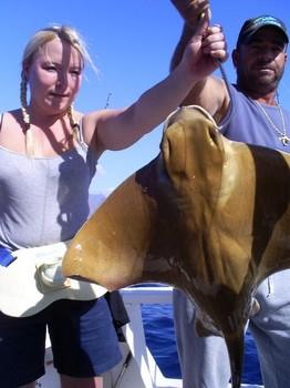 Eagle Rays Cavalier & Blue Marlin Sport Fishing Gran Canaria
