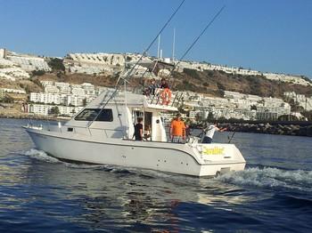 El caballero Pesca Deportiva Cavalier & Blue Marlin Gran Canaria