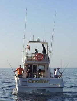 'NEW' Cavalier Cavalier & Blue Marlin Sport Fishing Gran Canaria