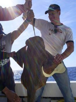 07/12 Tiburón ángeles Pesca Deportiva Cavalier & Blue Marlin Gran Canaria