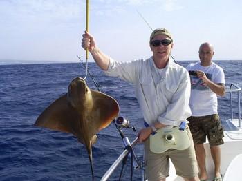 Eagle Ray Cavalier & Blue Marlin Sport Fishing Gran Canaria