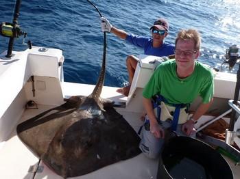 23/12 Common Stingray Cavalier & Blue Marlin Sport Fishing Gran Canaria